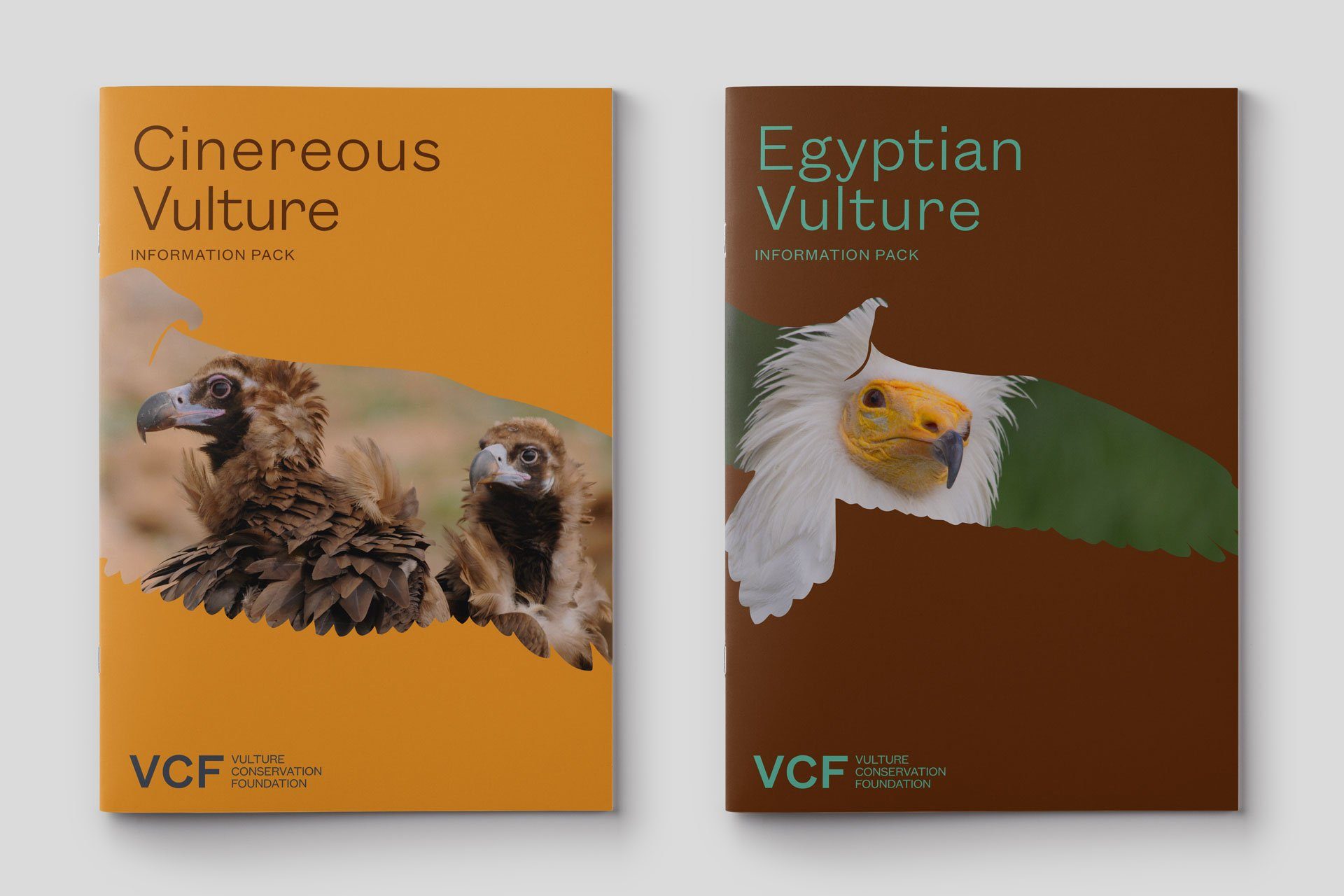 Vulture Conservation Foundation 8